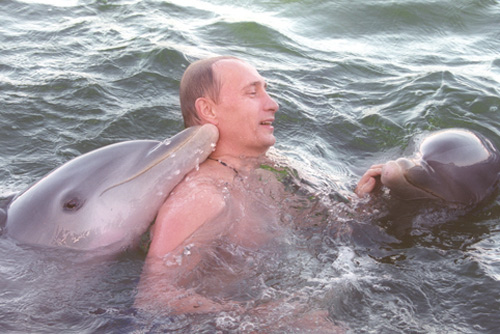 vladimir-putin-swimming-with-dolphins